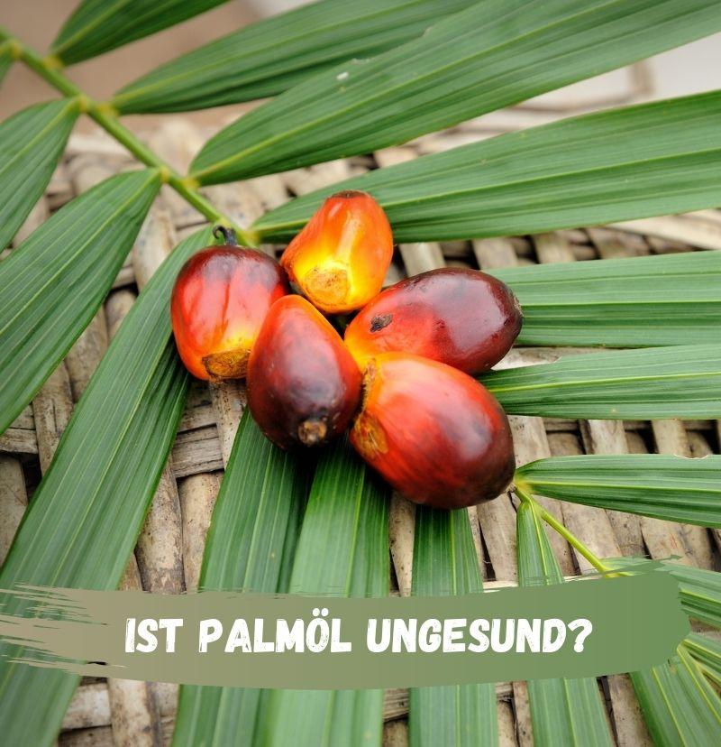 Ist Palmöl Ungesund